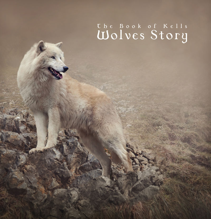Wolves Story - Copertina